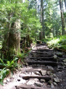 Grouse Grind Steps