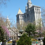 park-new-york-city