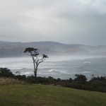 The-Catlins-Neuseeland